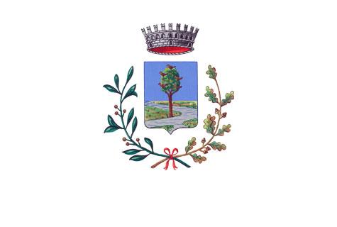 Comune di Pianiga